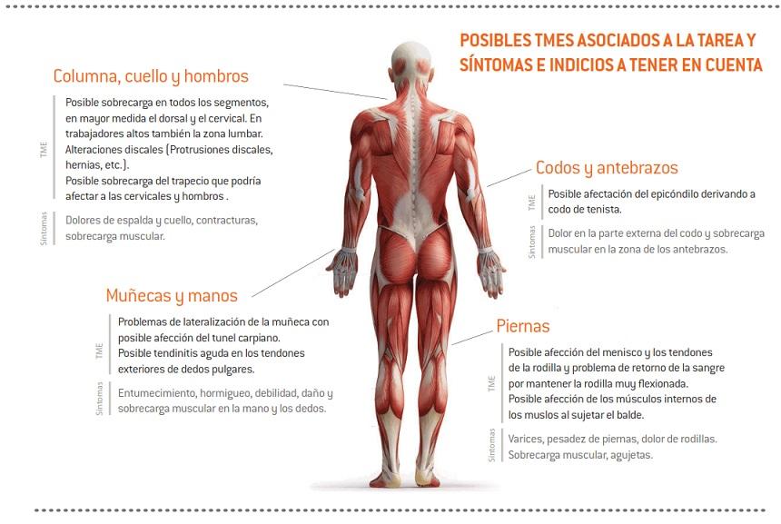 01-sintomas_TME_ovino_ordeno_manual
