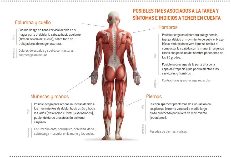 05-sintomas_TME_queserias_moldeo