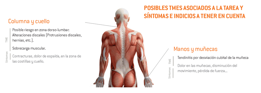 11-sintomas_TME_vendimia_caja_mano