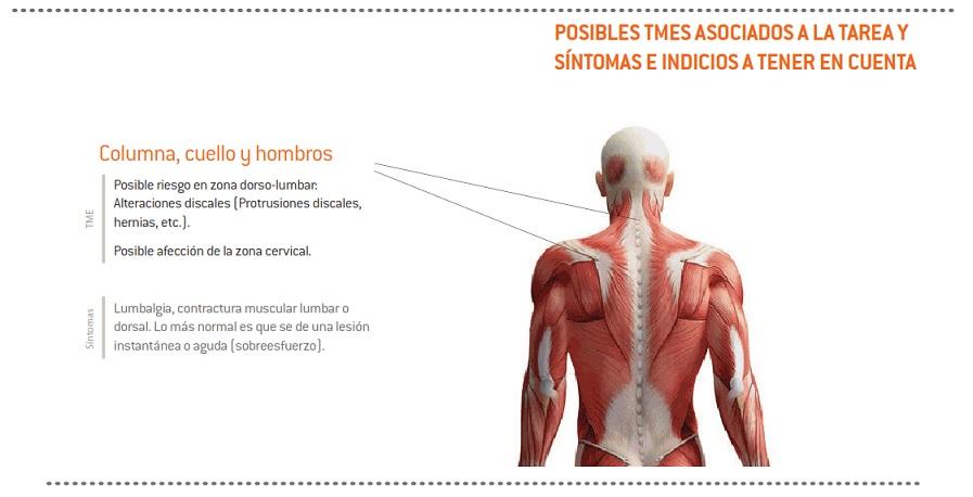 18-sintomas_TME_poda_VidVaso