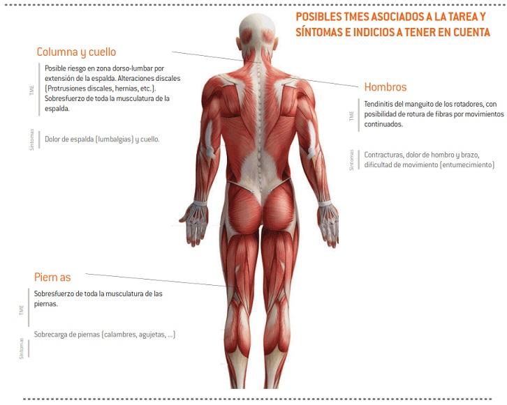 20-sintomas_TME_poda_VidParra