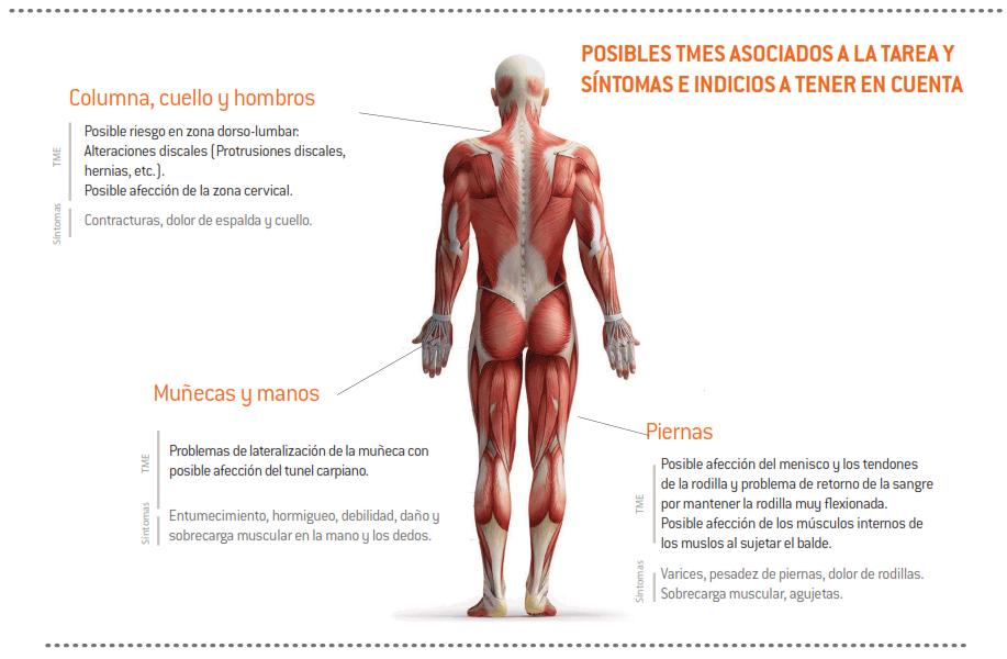 25-sintomas_TME_bodega_encubado