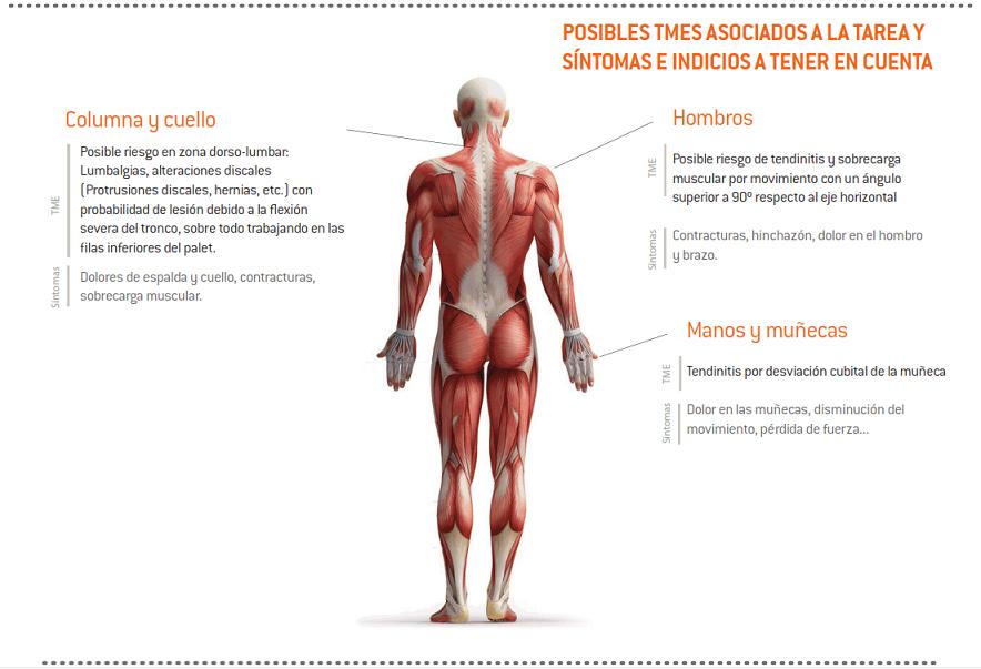 26-sintomas_TME_bodega_suministroBotellas