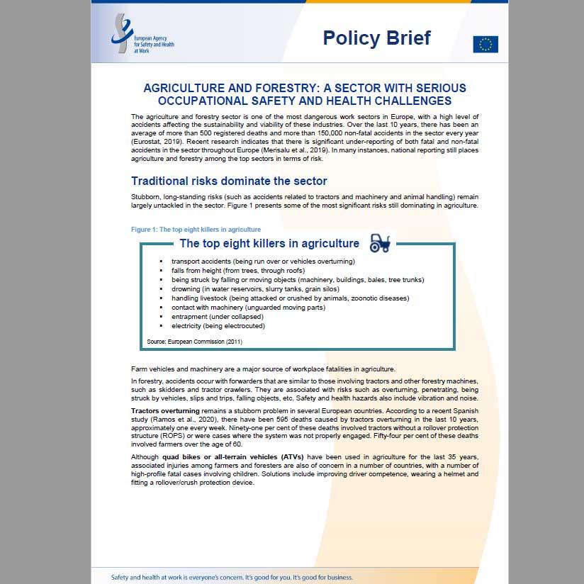 policy_brief